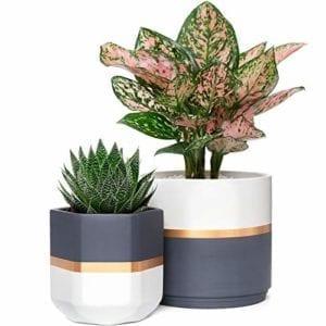 Mkono Ceramic Planters